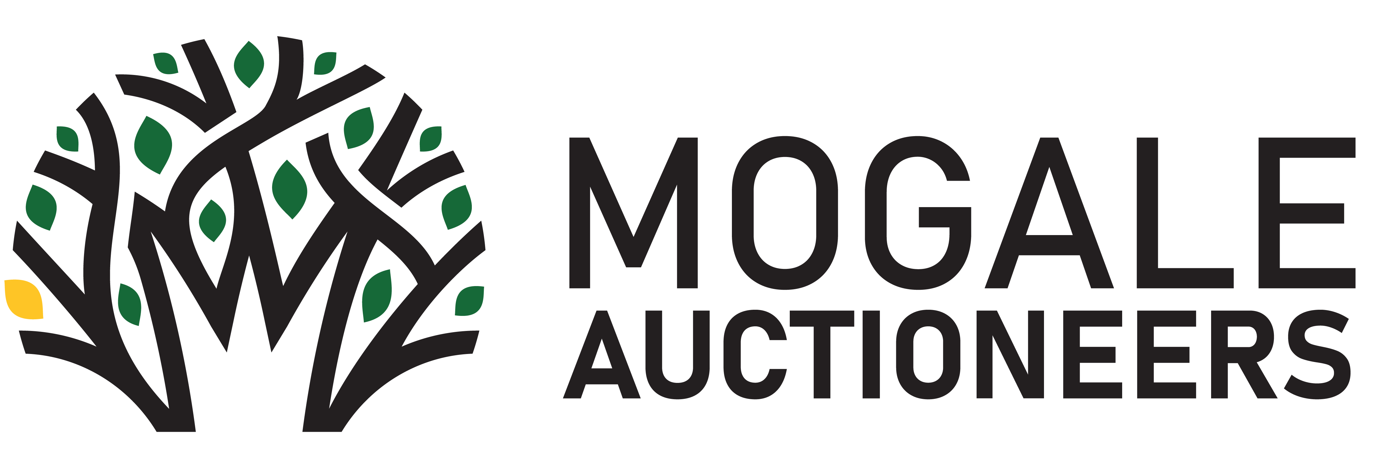 Mogale Auctioneers